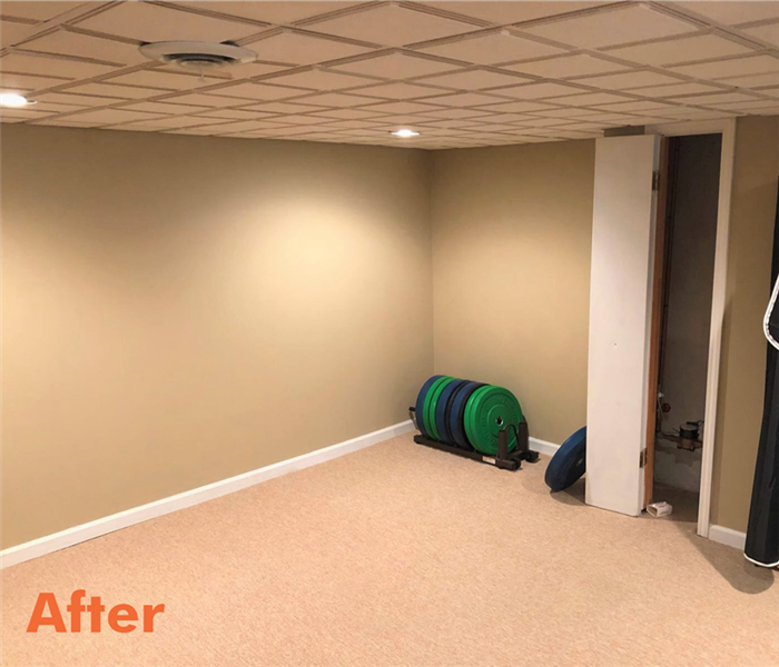 A basement in Romulus after SERVPRO Franchise Professionals cleaned up the damage and restored the floor and walls.