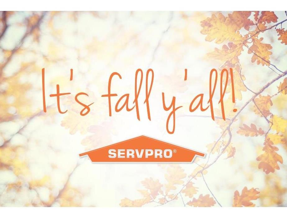 SERVPRO logo with leaves