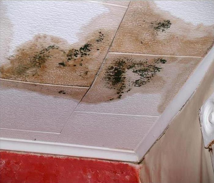 Stained ceiling from water damage